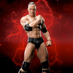 WWE THE ROCK - S.H.FIGUARTS