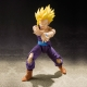 Dragon Ball Z Super Saiyan Son Gohan ~ S.H.Figuarts