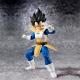 Vegeta Dragon Ball Z - S.H.Figuarts