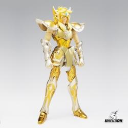 Aquarius Hyoga Saint Seiya (+ Corps de remplacement) - Myth Cloth EX