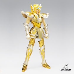 Aquarius Hyoga Saint Seiya - Myth Cloth EX